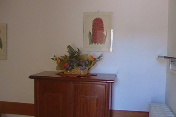 appartamento-lavanda-413139310-5032-0752-C618-3D969EE9D659.jpg